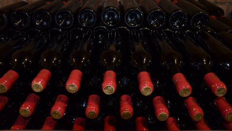 Kategorie vín